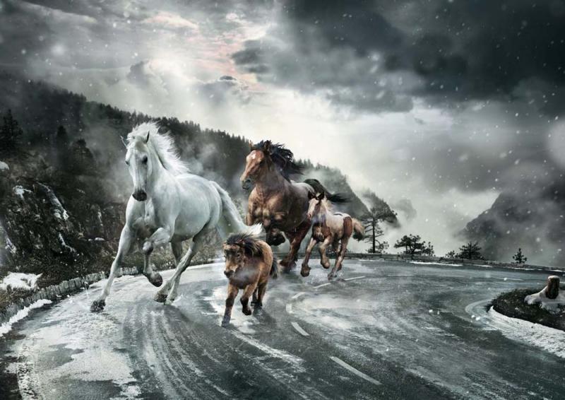 آشنایی کامل با مفهوم اسب بخار